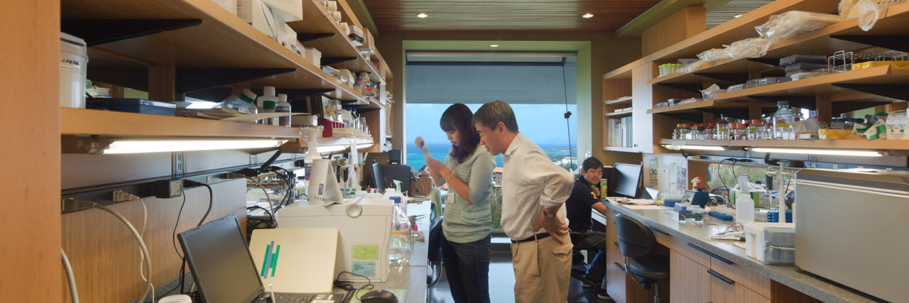 The Yamamoto Unit lab