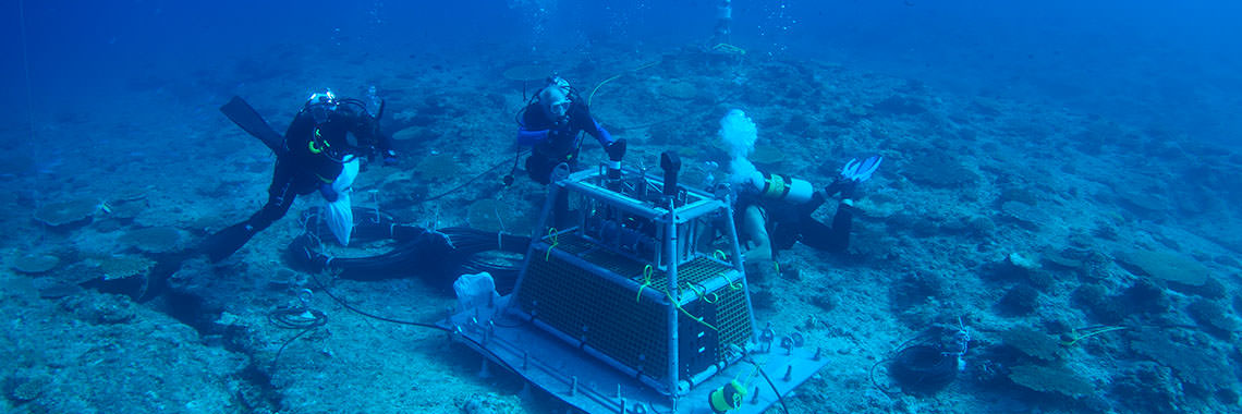 Photo of divers with the marine observatory equipment.